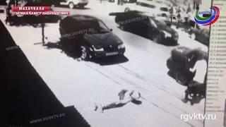 Массовая драка со стрельбой произошла в Махачкале накануне