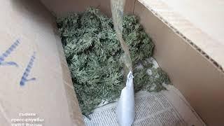 Крупную партию наркотиков изъяли в Смидовическом районе (РИА Биробиджан)