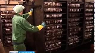 Ко Дню рыбака в Калининграде наградили лучших работников отрасли