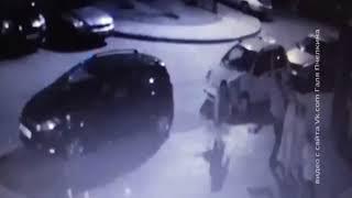 В Ростове на семью с детьми напала собака бойцовской породы