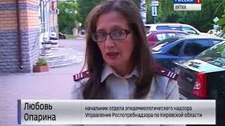Активность клещей в Кировской области увеличилась (ГТРК Вятка)