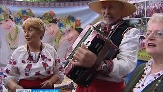 Как в Калининграде отпраздновали День России