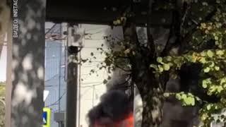 В центре Калининграда загорелся автомобиль 20.09.18