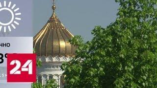После жары Москву накроет волна холода - Россия 24