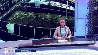 Новая рыбная ферма открылась под Череповцом