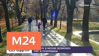 Снег и гололедица ожидаются в столичном регионе 29 октября - Москва 24