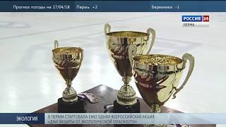 «Кубок Медведей» достался пермякам