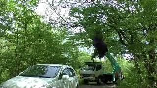 В Ставрополе парашютист жёстко приземлился во время показательных выступлений