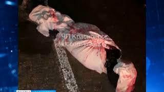 В Сухобузимском районе водителей напугал труп на дороге