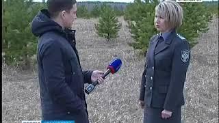 В Красноярском крае массово изымают землю