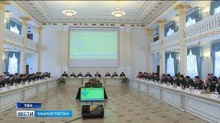 Правительство страны увеличит финансирование лесного хозяйства