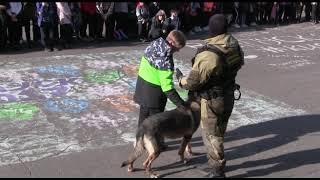 Полицейские провели показательные выступления для ярославских школьников