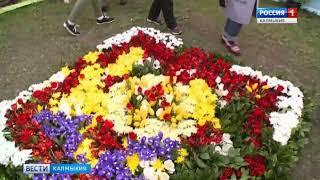 Заместитель министра культуры и туризма о готовности к Фестивалю тюльпанов