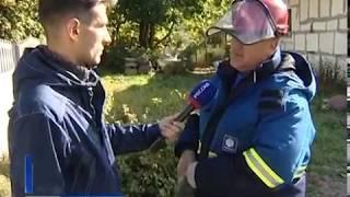 В Мамоновском и Багратионовском районах подстанции и сети готовят к штормам