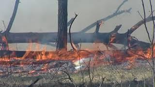 В регионе стартовали командно-штабные учения по отработке ЧС в условиях природных пожаров и паводка