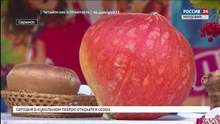 В Саранске отметили национальный эрзянский праздник урожая