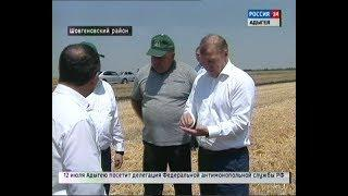 Глава Адыгеи ознакомился с ходом уборки озимых зерновых