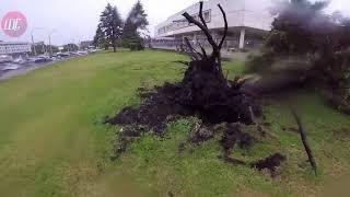 Последствия урагана в Ульяновске 30.05.18.Видео Виктора Щербакова