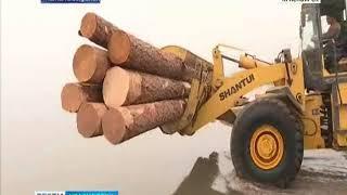 На севере края в самом разгаре сплав древесины