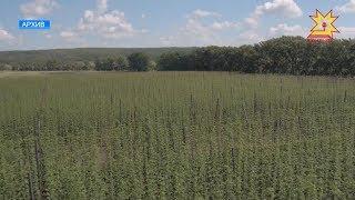 Перед работниками агропромышленного комплекса стоят новые задачи.