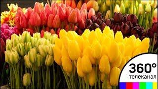 В Екатеринбурге приземлился воздушный десант цветов