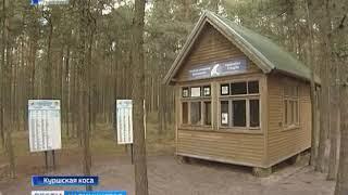 Национальный парк «Куршская коса» отмечает свой день рождения