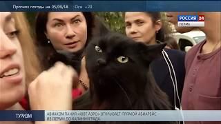 Пермь. Новости культуры 04.09.2018