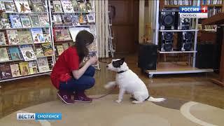 Дрессированные собаки выступили… в библиотеке