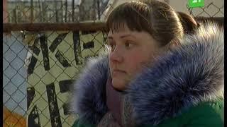 В Челябинске садоводов оставили без света
