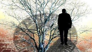 За югорчанами сохранится право выходить на пенсию раньше