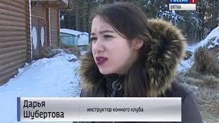 Незаконные конные прогулки в Порошино(ГТРК Вятка)