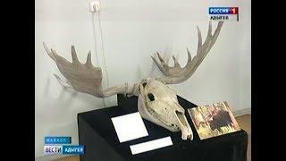 В Национальном музее Адыгеи открылась остеологическая выставка