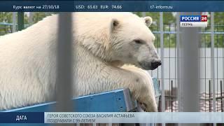 Белая медведица Милка готовится стать мамой