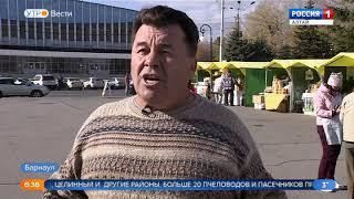 В Барнауле открылась ярмарка алтайского мёда «Золотой улей»