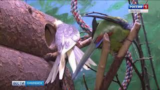 Смоленский зоопарк отметил День птиц