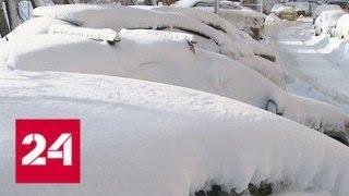 Добровольно, на свежем воздухе: Москва откапывается из-под снега - Россия 24