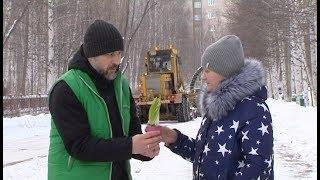 Незнакомцы подарили вартовчанкам цветы