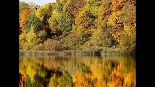 Нижегородская «золотая осень»