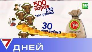 «Дни поля» в Татарстане. 7 Дней - ТНВ