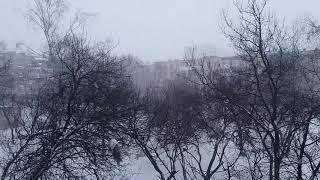 Снегопад бушует в Харькове