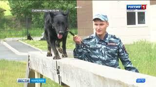 Центр кинологической службы МВД по Республике Карелия отмечает профессиональный праздник