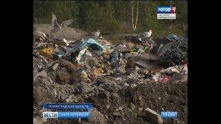 Вести Санкт-Петербург. Выпуск 20:45 от 13.09.2018