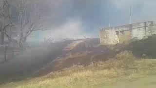Огненный вихрь обрушился на поселок на севере Приморья