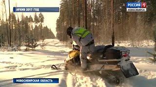 Сезон охоты на косуль открыли в Новосибирской области