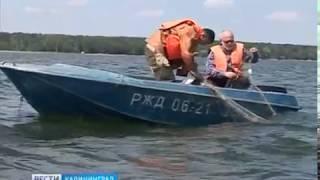 Калининградские учёные провели работы по оценке состояния водных биоресурсов на Виштынце