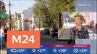 Прохладная погода ожидается в Москве - Москва 24