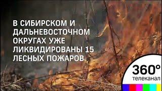 Массовые лесные пожары охватили Сибирь и Приморский край