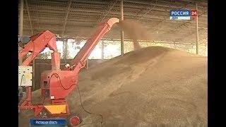 Донские власти: развитие сферы переработки зерна поможет выгодно экспортировать