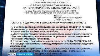 Как в Магаданской области реализуют закон «О безнадзорных животных».