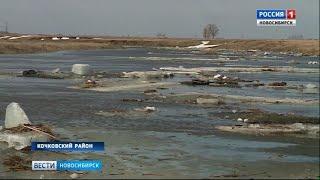 Первая волна паводка добралась до Новосибирской области